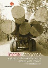 gw vested interests fr 06 - Global Witness