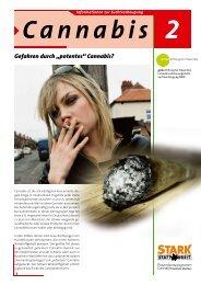 """Gefahren durch """"potentes"""" Cannabis? - ginko Stiftung für Prävention"""