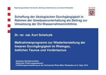 Vortrag 1_Massnahmen_Schefzik | PDF 1,0 MB