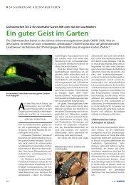 2003 Ornis. Ein guter Geist im Garten. - Glühwürmchen