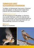 Landwirte für Schwalbe. Kiebitz & Co. - Gregor Louisoder ... - Seite 6