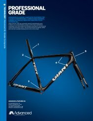 Professional Grade - Giant Bicycles
