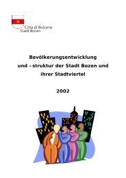 struktur der Stadt Bozen und ihrer Stadtviertel 2002