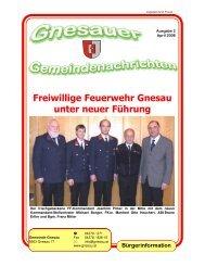 Freiwillige Feuerwehr Gnesau unter neuer Führung - Gemeinde ...