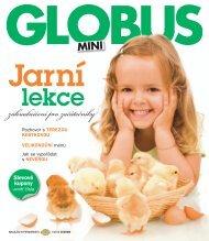Mini Globus 1 2010