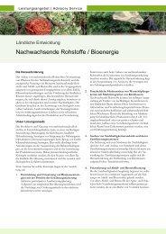 Nachwachsende Rohstoffe / Bioenergie - GIZ