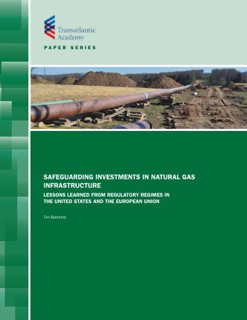 safeguarding investments in natural gas infrastructure - Transatlantic ...