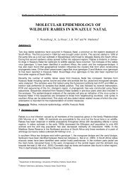 MOLECULAR EPIDEMIOLOGY OF WILDLIFE RABIES IN KWAZULU ...