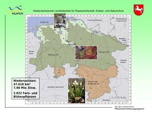 Das Niedersächsische Pflanzenarten-Erfassungsprogramm