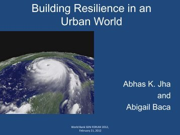 Building Resilience in an Urban World - GFDRR