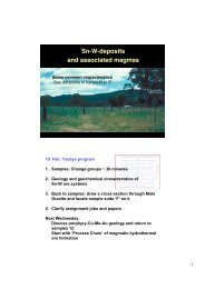 Sn-W-deposits and associated magmas