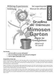 cum să cultivi cu succes mimozele? - German Electronics