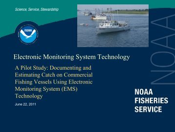 Electronic Monitoring (pdf)