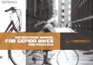 4. Appendix C: Removing the front wheel - Gepida