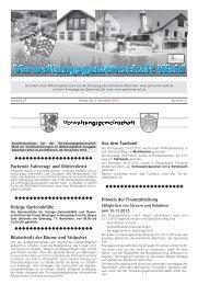 Parkende Fahrzeuge und Winterdienst - Gemeinde WALD