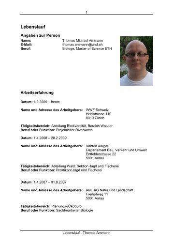 Niedlich Beispiel Lebenslauf Für Bauingenieur Studenten Pdf Galerie ...