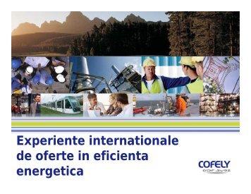 Experiente internationale de oferte in eficienta energetica