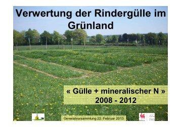 Verwertung der Rindergülle im Grünland