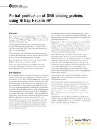 Partial purification of DNA binding proteins using HiTrap Heparin HP