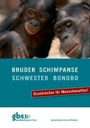 Bruder SchimpanSe SchweSter BonoBo - Giordano Bruno Stiftung