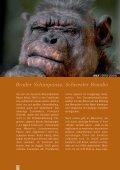 Bruder SchimpanSe SchweSter BonoBo - Giordano Bruno Stiftung - Seite 2