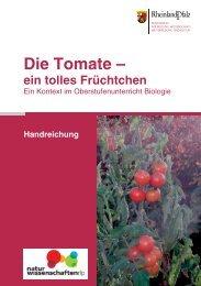 """2 Kontext """"Die Tomate – ein tolles Früchtchen"""" - Naturwissenschaften"""