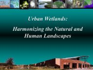 Urban Wetlands: Harmonizing the Natural and Human Landscapes