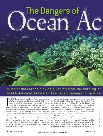 The Dangers of Ocean Acidification - Precaution