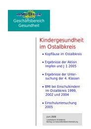 Schulbericht 2006 - Gesundheitsnetz Ostalbkreis