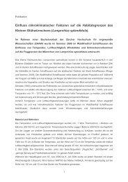 2010 Vogelsanger: E - Glühwürmchen
