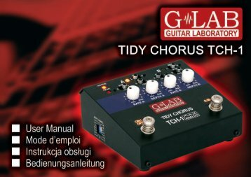 Tidy Chorus TCH-1 User Manual - G LAB
