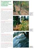 Il bosco protettivo nel segno dei mutamenti climatici - Page 2