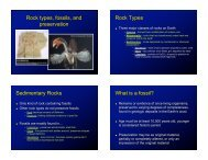 Rock types, fossils, and preservation Rock Types Sedimentary ...