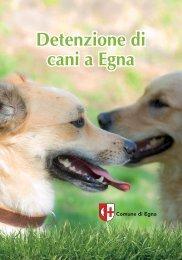 Detenzione di cani a Egna Detenzione di cani a Egna