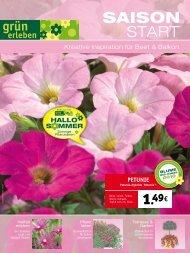 S MMER HALLO - Hoeren Garten und Landschaftsbau