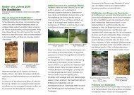 Boden des Jahres 2010 Die Stadtböden - Geologischer Dienst NRW