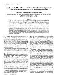 Mutations in the RNA Polymerase I1 Transcription ... - Genetics