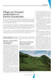 Pflege von Terrassenlandschaften im Kanton Graubünden