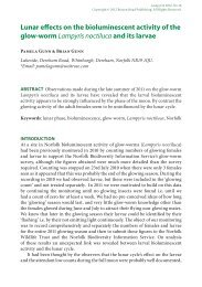 PDF (1.36 MB) - The Lampyrid
