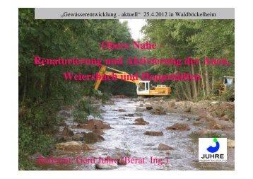 Obere Nahe - Renaturierung und Aktivierung der Auen, Weiersbach ...