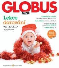 Mini Globus 4 2010
