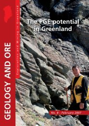 The PGE potential in Greenland - Geus