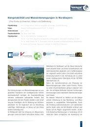 Projektbeschreibung - Geographie - Universität Würzburg