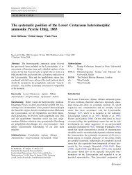 The systematic position of the Lower Cretaceous heteromorphic ...
