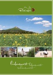 Imagebroschüre zum Download - Gemeinde Bisingen