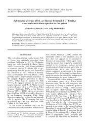 Schaereria dolodes (Nyl. ex Hasse) Schmull & T. Sprib.: a second ...