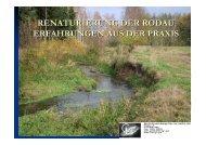 Renaturierung der Rodau | PDF 2,55 MB