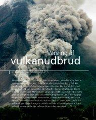 Download kapitel 4 som PDF - Aarhus Universitet