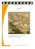 Stupa - Pressemappe 09 09 2011.pub - Stadtgemeinde Gföhl - Page 4