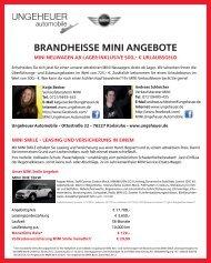 Brandheisse MINI Angebote - Ungeheuer Automobile - Mini